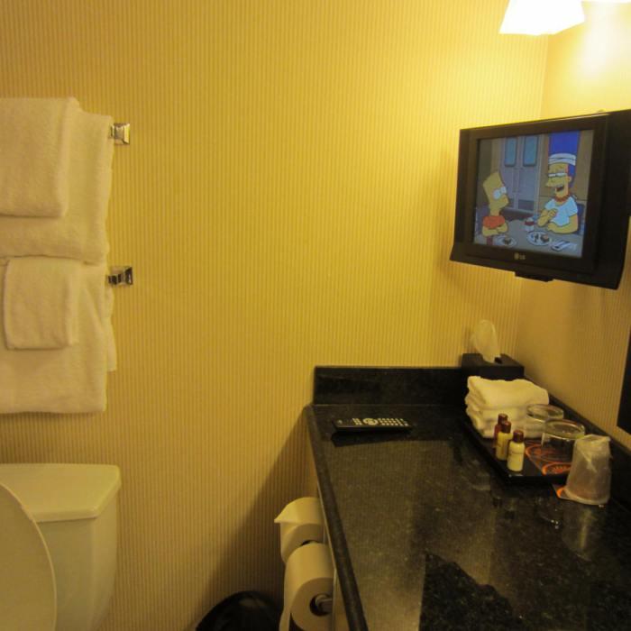 Flat screen TV in the bathroom!