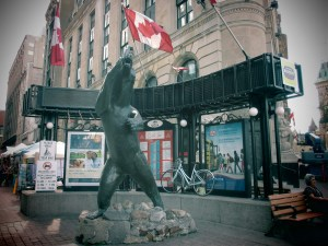 Bear in front of Sparks Street Mall