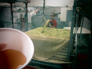 Part of the apple cider making process (fresh apple cider in the foreground)
