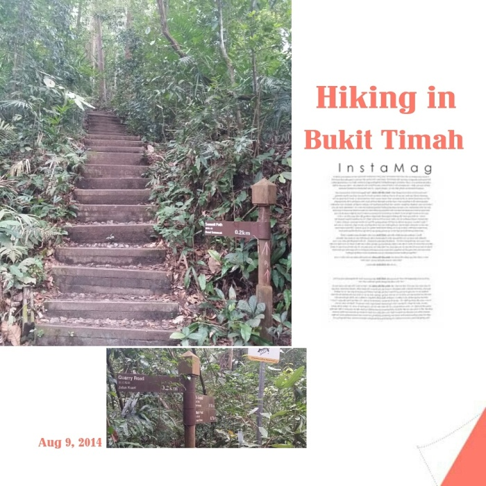 Look at the numerous steps of summit path (big pic)!