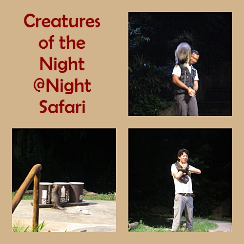 Creatures of the Night Show