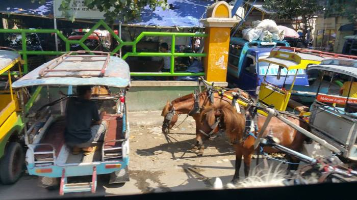 Cidomo - the most common transport on Gili Islands