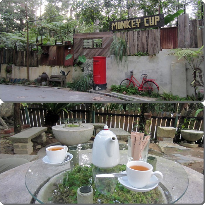 The Monkey Cup Sanctuary signboard (top) with our pot of soothing Lavender tea in Kopi Hutan (bottom)