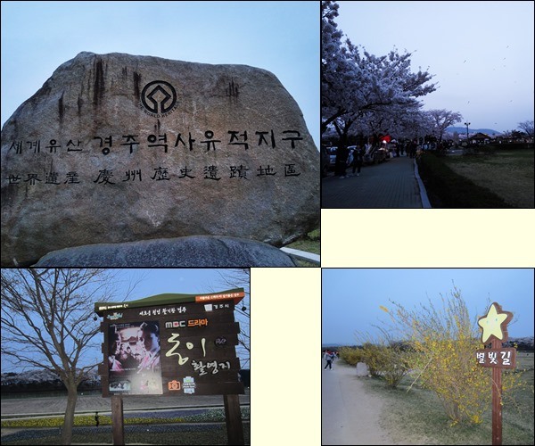 Cheomseongdae in the national park