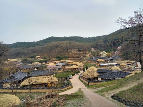Beautiful elevated village view as we moved uphill