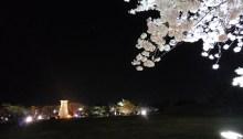cheomseongdae-night-view