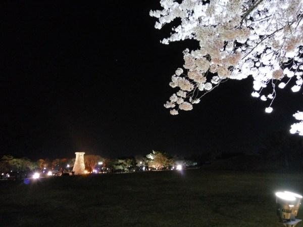 The beautifully-lit Cheomseongdae at night