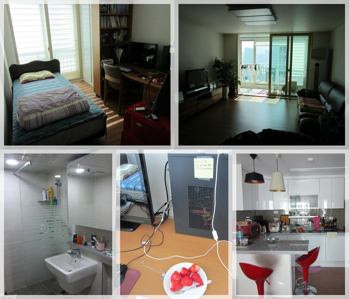 Different views of the apartment