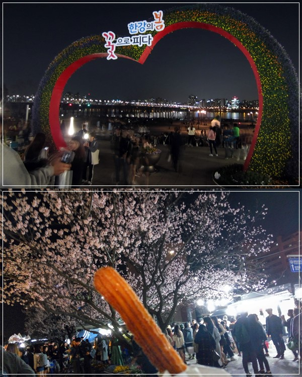 Eating KRW 1,000 churros fresh from the oven under the cherry blossom tree