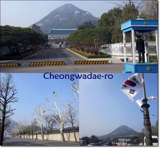 "The ""solemn"" walk along Cheongwadae-ro ^-^"