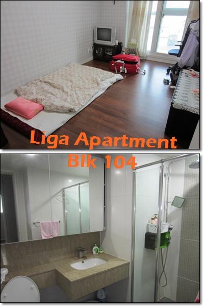 Liga Apartment 1