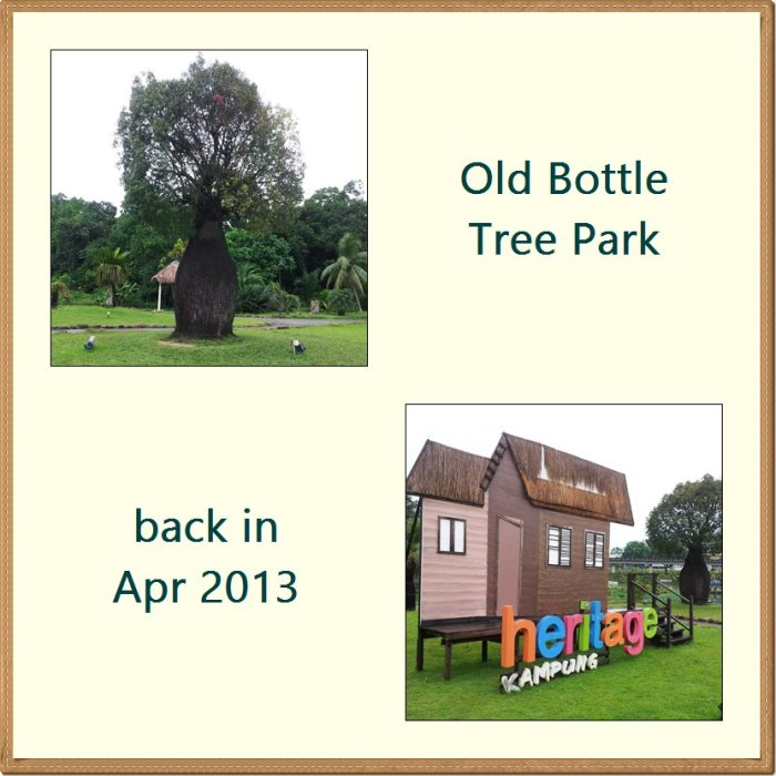 Old Bottle Tree Park
